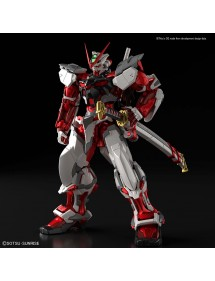 HiRM HI-RESOLUTION MODEL 1/100 GUNDAM ASTRAY RED FRAME