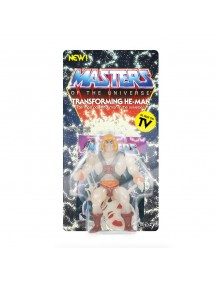 MASTERS OF THE UNIVERSE TRANSFORMING HE-MAN