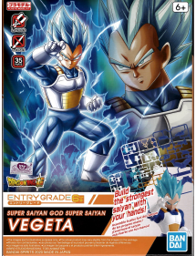 ENTRY GRADE 3 SUPER SAIYAN GOD SUPER SAIYAN VEGETA